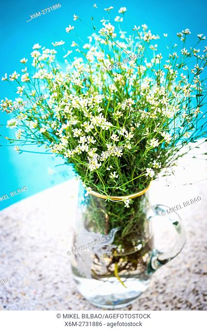 Decoration Of Crystal Vases Stock Photos And Images Age Fotostock
