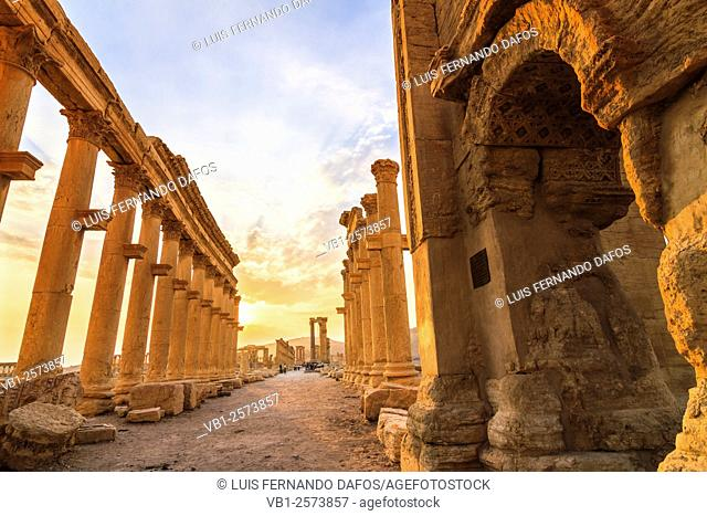 Great Colonnade at sunset. Palmyra, Syria
