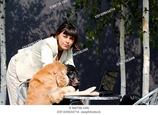 Strategic conference meeting with two cocker spaniel dogs and a computer and a financial newspaper