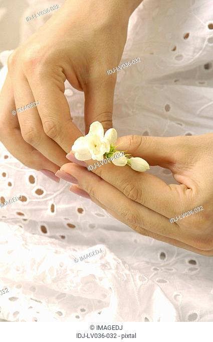 Close-up of a woman's hands holding flowers