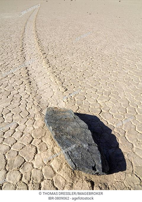 Track created by one of the mysterious moving rocks at the Racetrack, a dry lakebed or playa, Death Valley, Death Valley National Park, California, USA