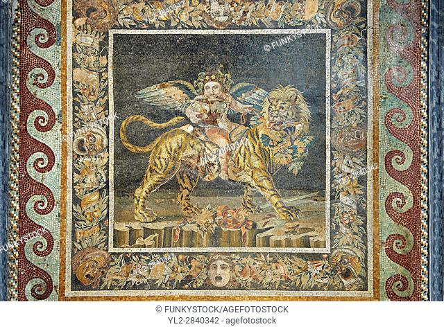 Roman mosaic of Naples Archaeological Musum, Italy