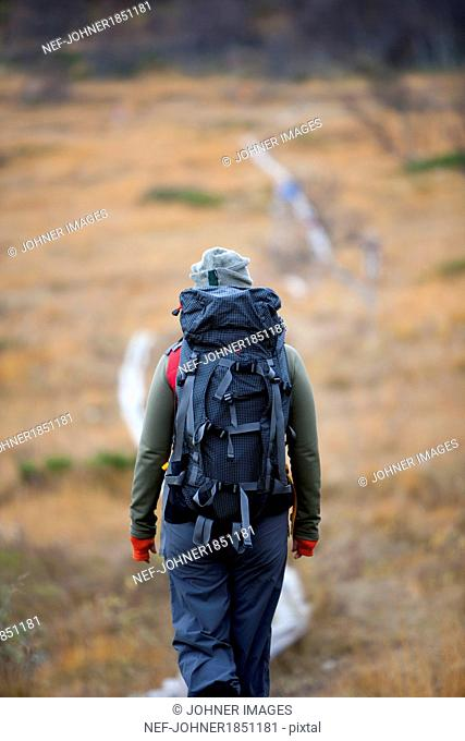 Rear view of woman hiking