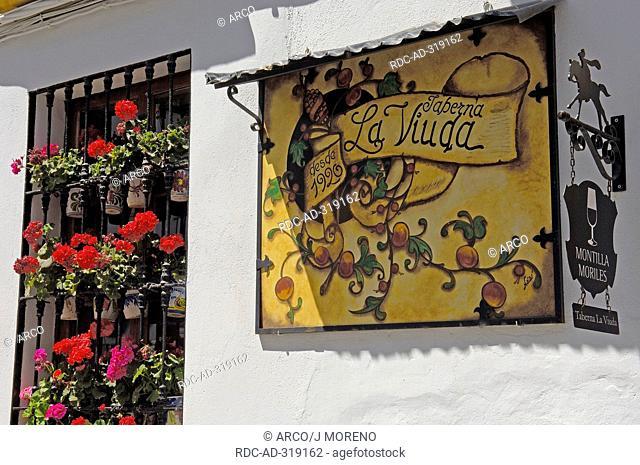 Facade, sign Taberna La Viuda, San Basilio District, Cordoba, Andalusia, Spain / taverna, tavern