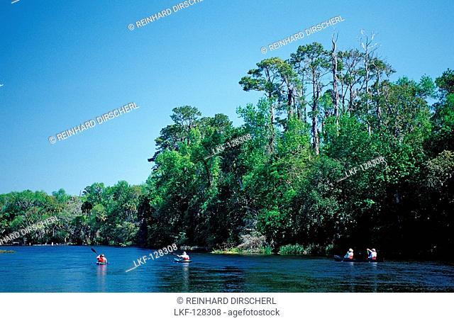 Scuba diver in Rainbow River, USA, Florida