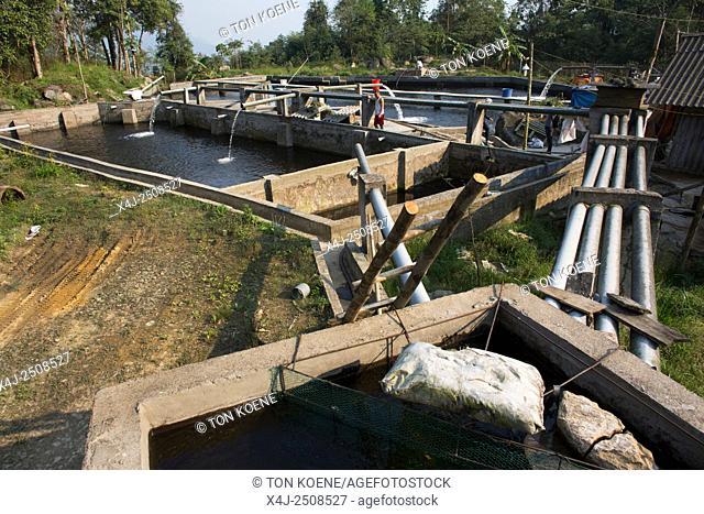 fish farm in Northern Vietnam