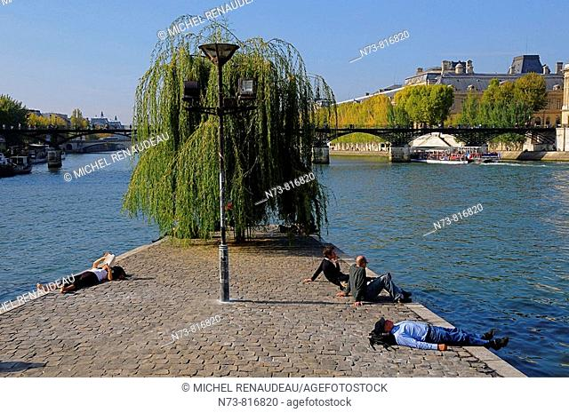Square du Vert-Galant, Île de la Cité, Paris, France