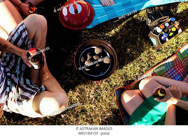 High angle view of friends holding beer sitting on grass during picnic