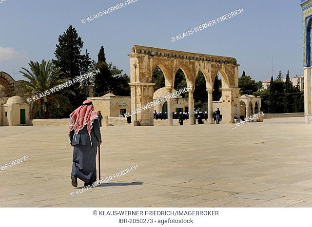 Old Palestinian man wearing a keffiyeh, kufiya approaching the Dome of the Rock on his own, on Temple Mount, Muslim Quarter, Old City, Jerusalem, Israel