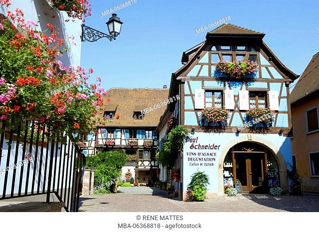 France, Haut Rhin, Alsace Wine Route, Eguisheim, labelled Les Plus Beaux Villages de France (The Most Beautiful Villages of France)