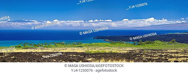 lava field, palm tree groves, Kiholo Bay, Haleakala volcanic mountain 10,023 ft of Maui and Pacific Ocean in backgound, scenic view from Kohala Coast