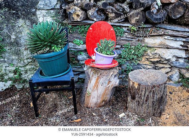 Recycling of toilet seat, flowerpot, Liguria, Italy