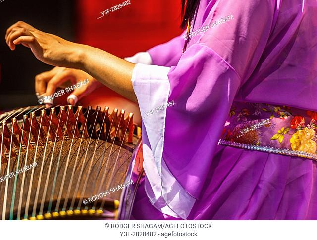 The guzheng, also known as the Chinese zither, is a Chinese plucked string instrument with a more than 2,500-year history
