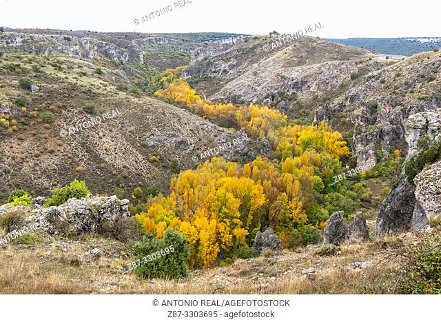 Parque Natural Barranco del Río Dulce. Pelegrina. Guadalajara Province, Castile-La Mancha, Spain