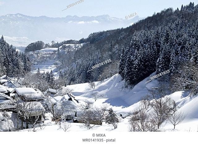 Snowscape, Nagano, Japan