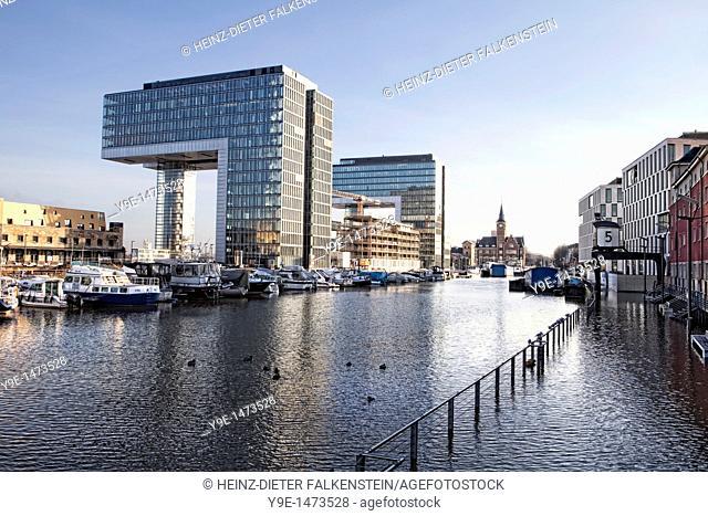 Rhine River during high water, Kranhaus buildings on the Rheinauhafen harbour, Cologne, North Rhine-Westphalia, Germany, Europe