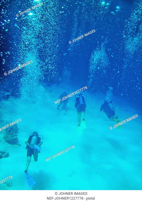 Tourists scuba-diving in sea