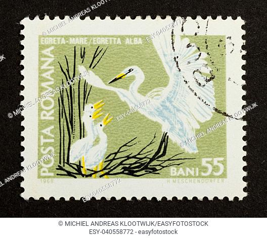 ROMANIA - CIRCA 1980: Stamp printed in Romania shows an adult aigrette with 3 young aigrettes . , circa 1980