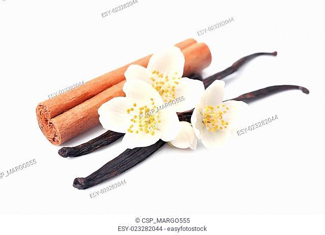 Vanilla sticks and cinnamon with flowers