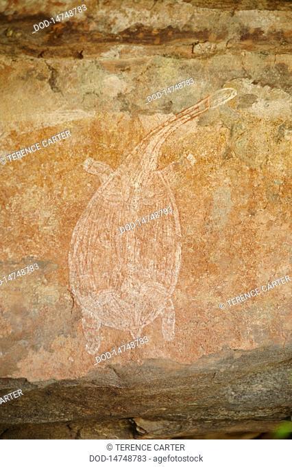 Australia, Ubirr rock art