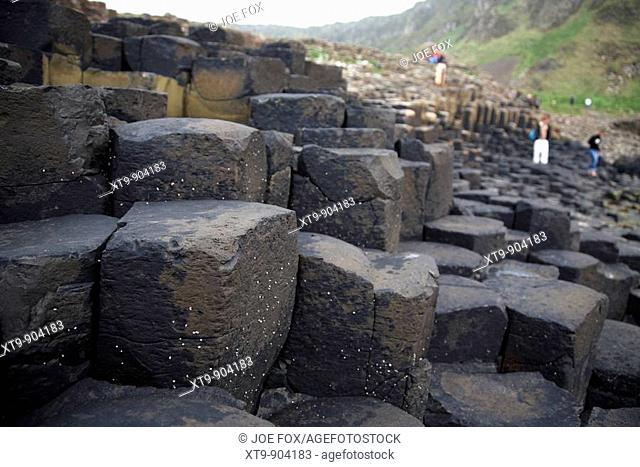 tourists wander round the red basalt hexagonal rock formations at the giants causeway county antrim northern ireland uk