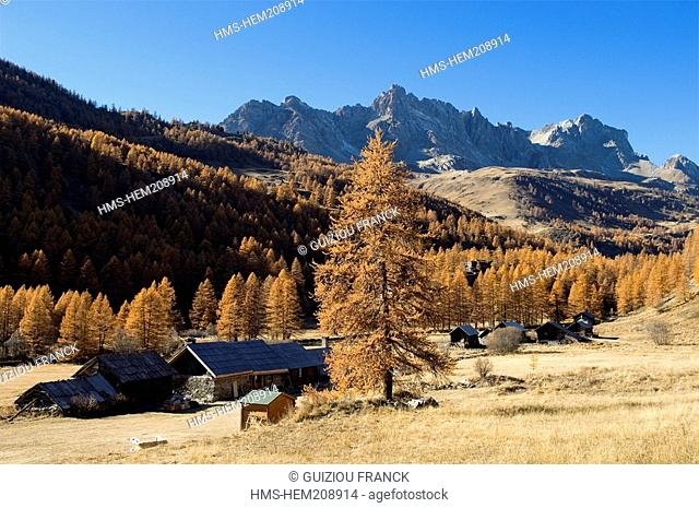 France, Hautes Alpes, the Brianconnais area in autumn, La Claree Valley