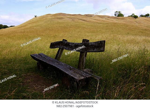 Old wooden bench at Yellow Mountain, a protected landscape of the Hahnenkamm region. The xeric grassland afford many butterfly species an ideal habitat -...