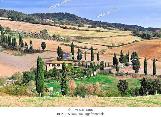 Countryside nr Pienza Tuscany Italy