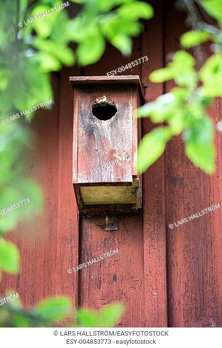 Nesting box for birds hanging on house exterior