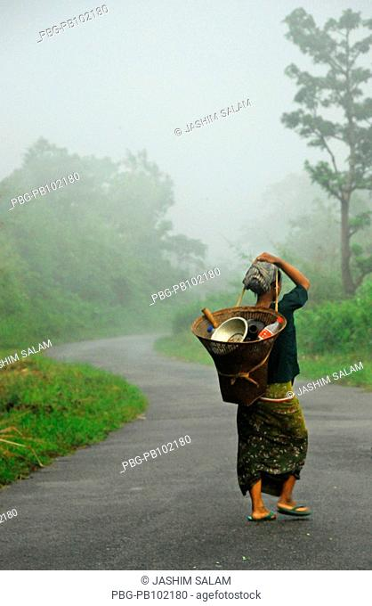 An ethnic woman on the way to zoom cultivation Bandarban, Bangladesh July 2008