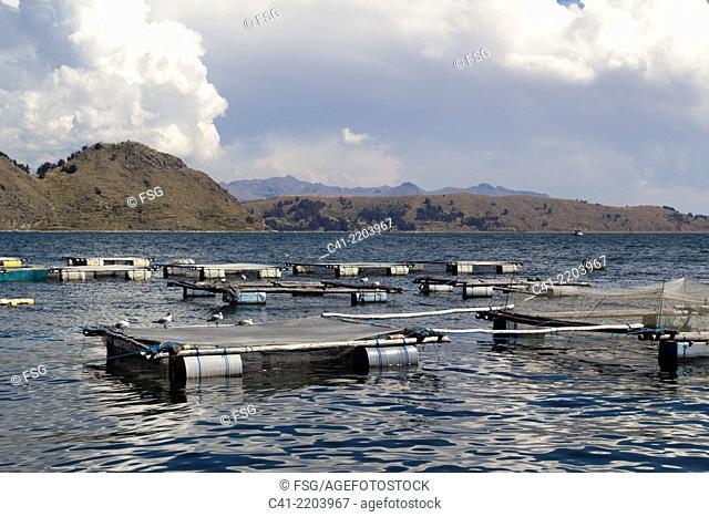 Titicaca lake. Copacabana. Bolivia