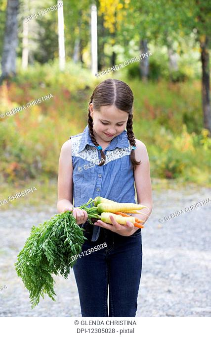 Young girl walking with freshly picked Alaska grown carrots, Palmer, Southcentral Alaska, autumn