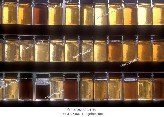 maple syrup, Montpelier, VT, Vermont, Samples of different grades of maple syrup in the window of Morse Farm at sugaring time in Montpelier