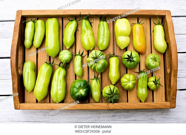 Tray with various tomatoes, stage of ripeness, unripe