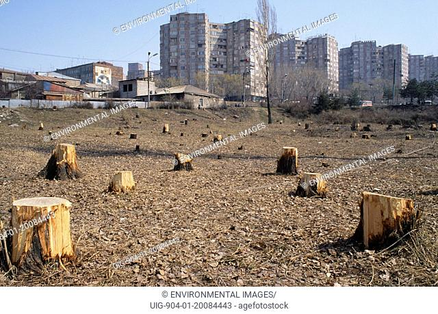 ARMENIA Yerevan. Outskirts of city with trees chopped down for firewood for heating and cooking. People had no electricity or gas due to economic blockade of...