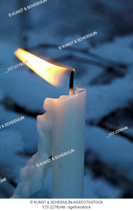 Candle burning on a snow-covered fir tree
