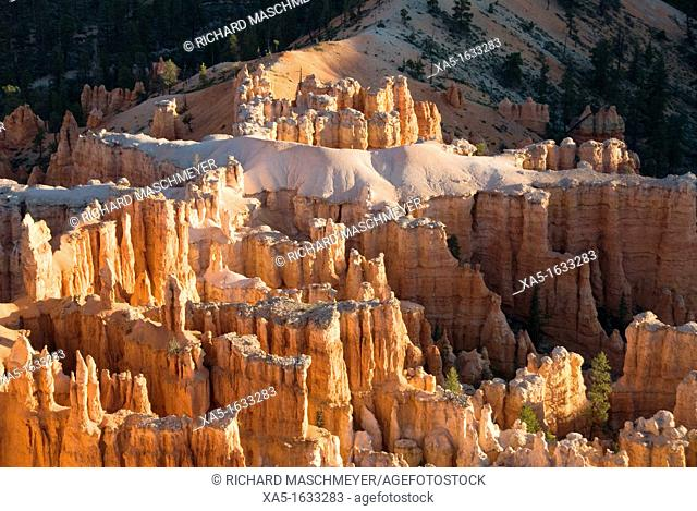 Bryce Point, 'alligator' rock formation white, Bryce Canyon National Park, Utah, USA