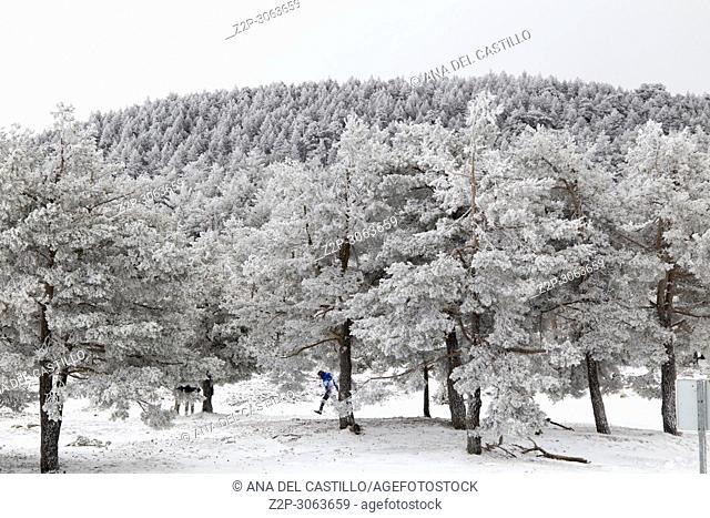 Frozen landscape Valdelinares mountains in winter. Teruel, Aragon, Spain