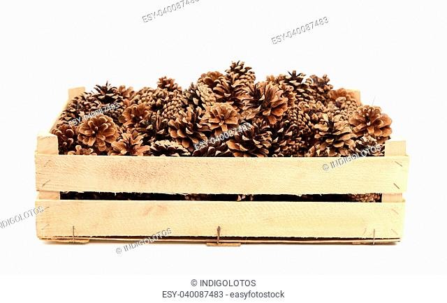 Pine cones in the wooden box on a white background