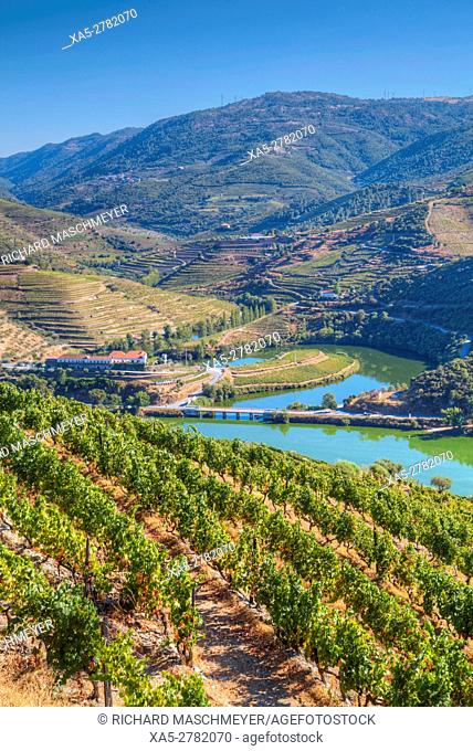 Vineyards and the Douro River, Alto Douro Wine Valley, UNESCO World Hertiage Region, Portugal