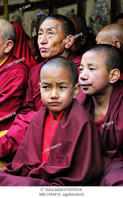 Buddhist monks during the Chaam Musk Dancing Festival at Hemis Gompa