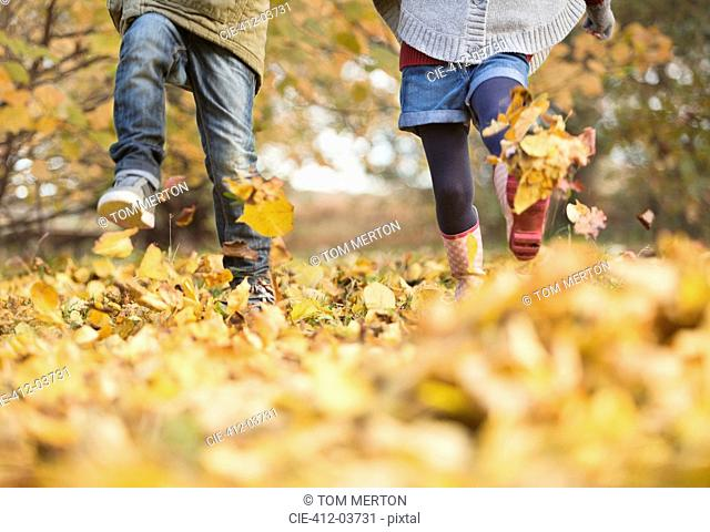 Children walking in autumn leaves
