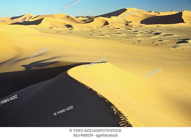 Algeria, surrounding of Tamanrasset