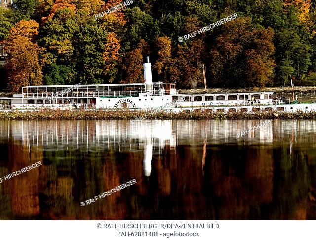 The paddle steamer 'Dresden' (built in 1926) reflects in the Elbe river while autumn-like colored trees are seen in the background close to Dresden-Blasewitz