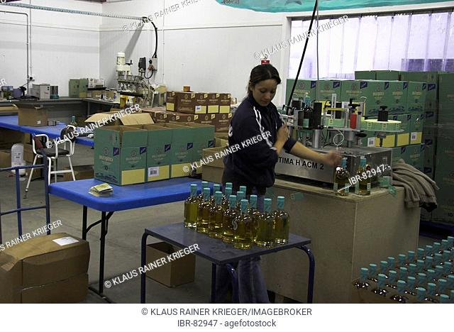 The distillery of Bruichladdich has its own bottling line, a rarity. Picture shows tagging and packing of the bottles