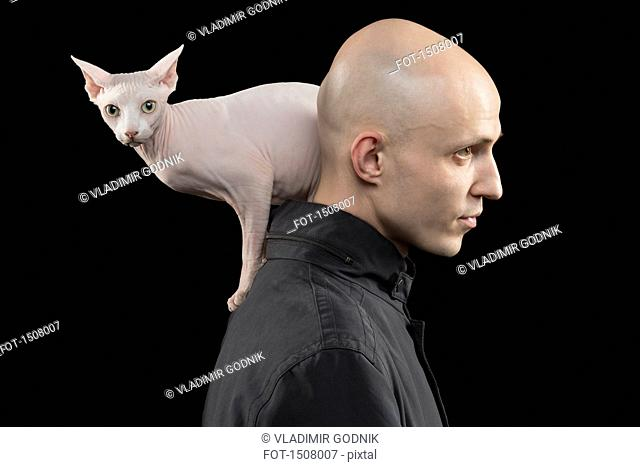 Profile view of bald man carrying Sphynx hairless cat on shoulder against black background