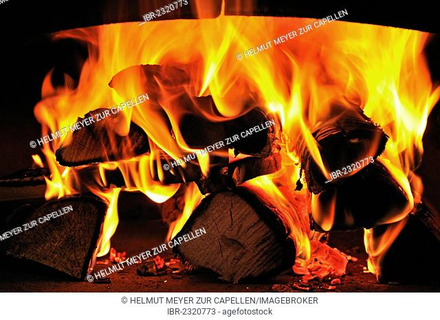 Burning beech wood in a tarte oven, Ringsheim, Baden-Wuerttemberg, Germany, Europe
