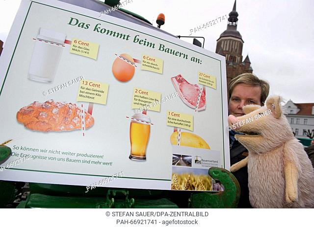 Heike Mueller of the Landfrauenverband (lit. rural women's association)points to an information board with a soft toy pig