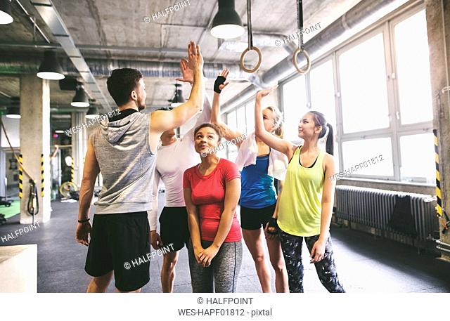 Group of young people high fiving in gym