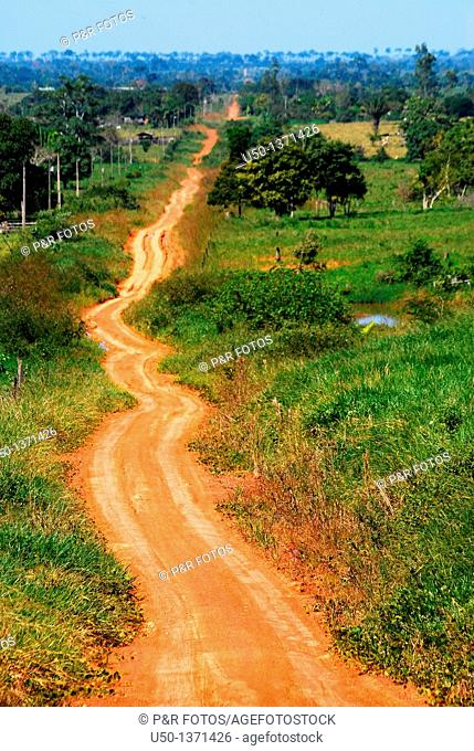 View of a earth road in Amazon region Ramal Nabor Júnior, Projeto de Assentamento Pedro Peixoto, Senador Guiomard, Acre, Brazil, 2009
